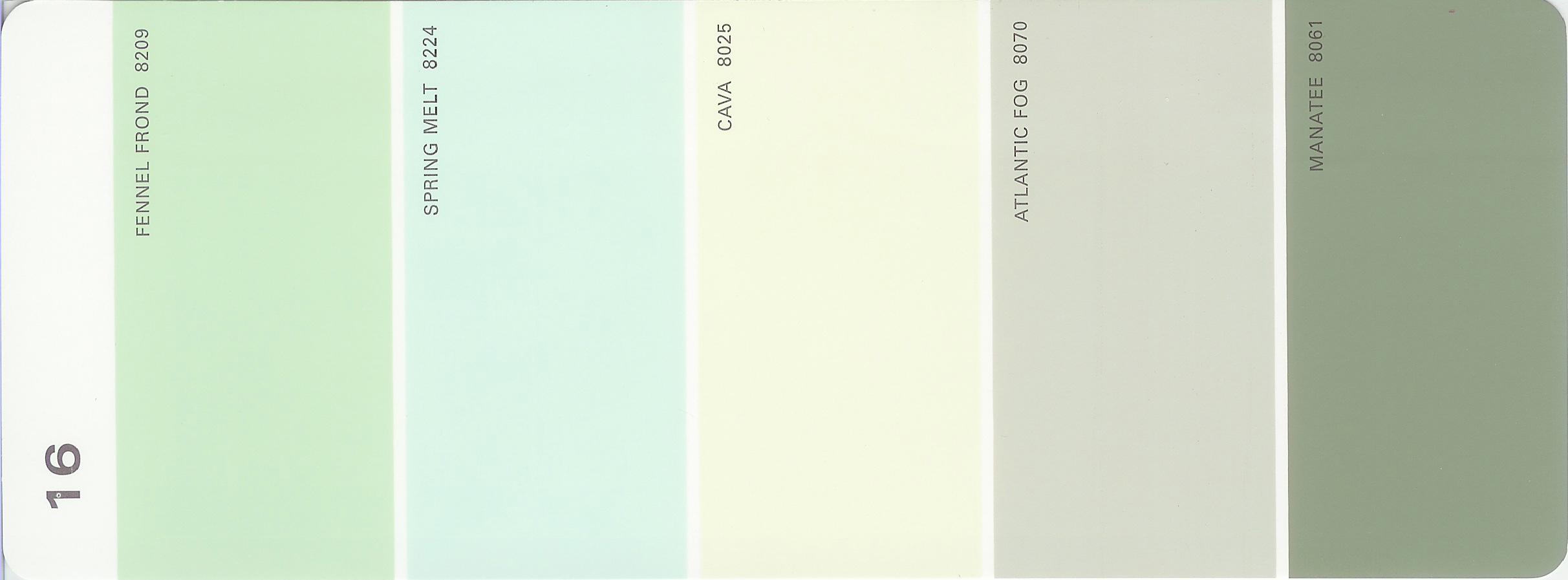 Martha Stewart Paint 5 Color Palette Card 16