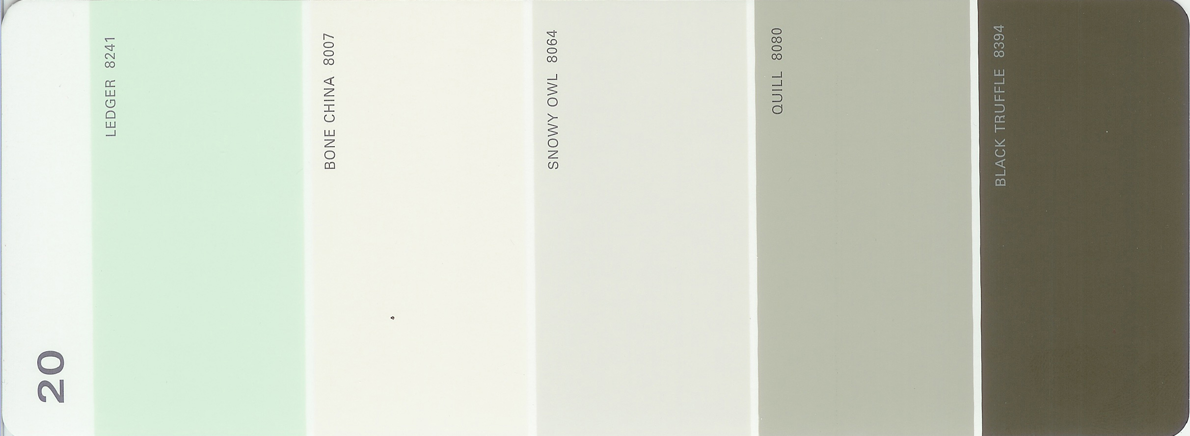 Martha Stewart Paint 5-Color Palette Card #20