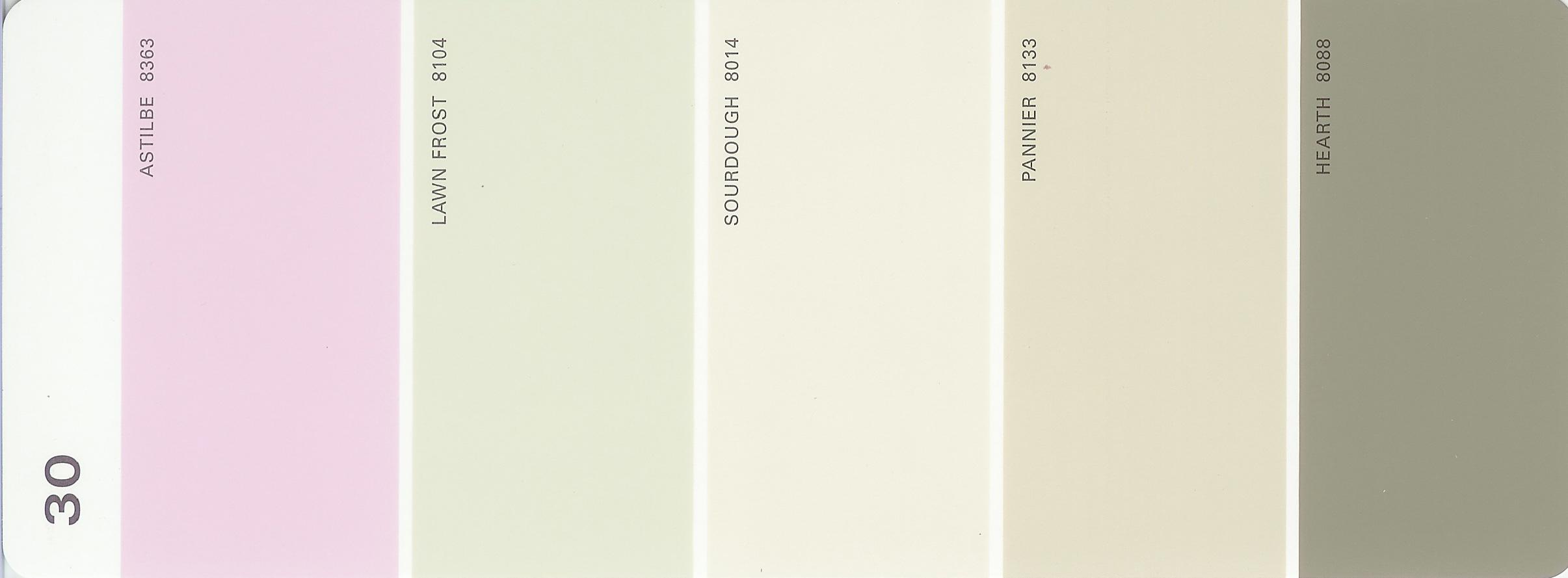 Martha Stewart Paint 5 Color Palette Card 30