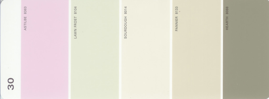 Martha Stewart Paint 5-Color Palette Card #30