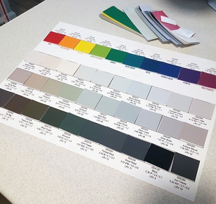 Camp Chroma Color Training